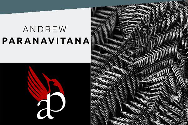 tableaux de l'artiste Andrew Paranavitana